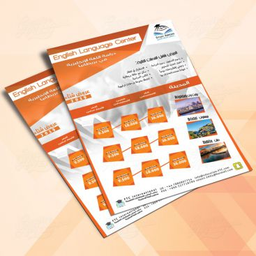 MCSE Education Training Flyer Print Friendly Brochure Design