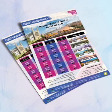 MCSE2 Education Training Flyer Print Friendly Brochure Design