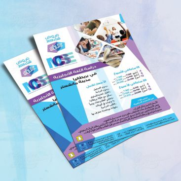 MSE Education Training Flyer Print Friendly Brochure Design