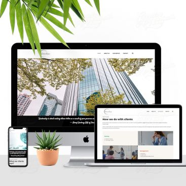 Silverline Consultancy Firm Mobile Friendly Website Design
